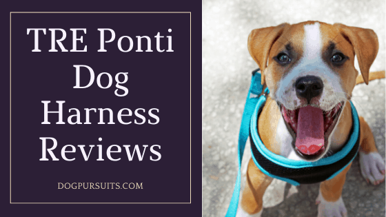 The Easy to Read TRE Ponti Dog Harness Reviews