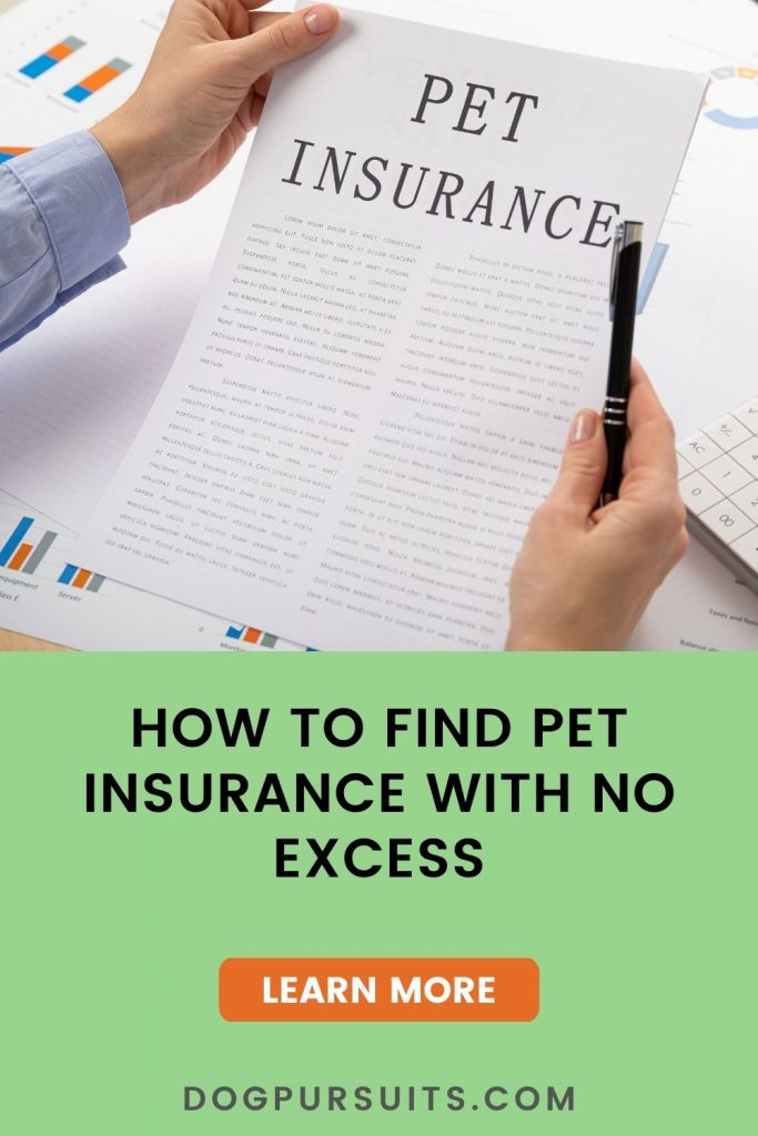 Learn how to find pet insurance with no excess
